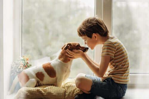 Hundeküsse in Zeiten des Coronavirus: Gibt es Risiken?
