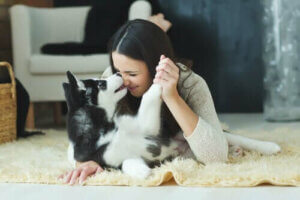 Hundeküsse - Frau spielt mit Hund