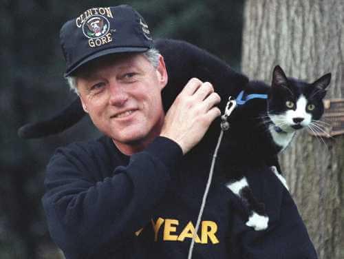Bill Clinton und seine Katze Socks
