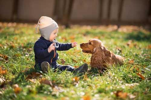 One Health für Kind und Hund