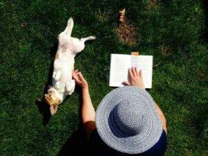 So kam der Mensch auf den Hund: ein Werk von Konrad Lorenz