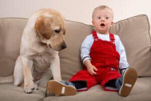 Down-Syndrom - Junge mit Hund auf Sofa