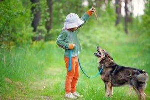 Training mit deinem Hund - Kind trainiert Hund