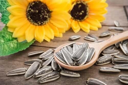 Sonnenblumenkerne: 3 Vorteile für deine Haustiere