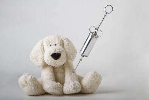 Veterinärimmunologie - Stoffhund mit einer Spritze