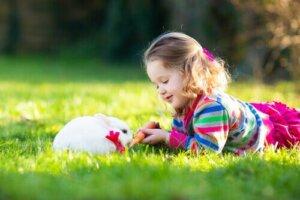 Die Vorteile der Therapie mit Kaninchen