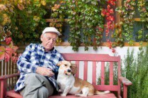 Betagte Menschen und Hunde: Hundehilfe für Menschen mit Demenz