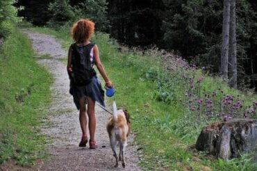 Camping mit Hund: 5 Tipps für den gemeinsamen Urlaub