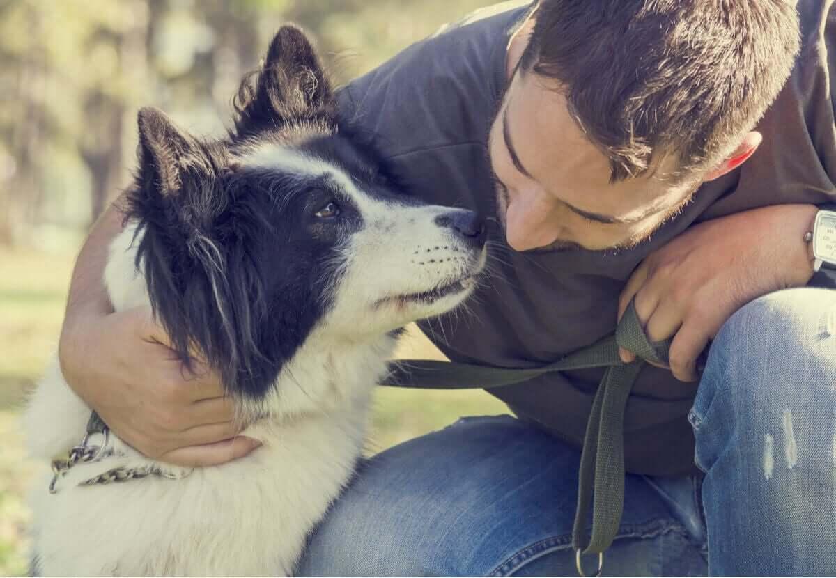 Erkrankungen der Reproduktionsorgane - Herrchen mit Hund