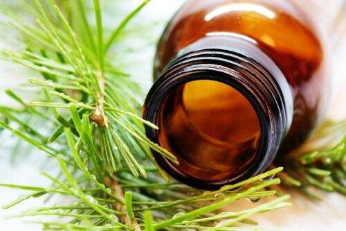 Ätherische Öle aus Pflanzen