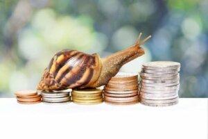 Tiere auf Münzen: einfach faszinierend