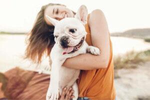 Vorsichtsmaßnahmen am Strand - Frau mit Hund