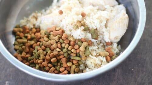 Medikamente und Hausmittel - Hundefutter mit Reis