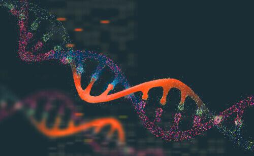 Genetik und Tierpopulationen: Interessante Fakten