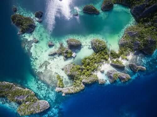 Korallenriffe - Luftaufnahme