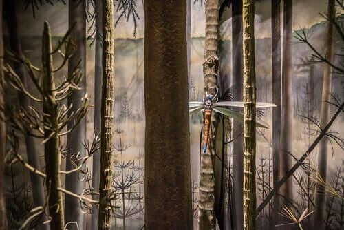 Rieseninsekten - Libelle im Wald