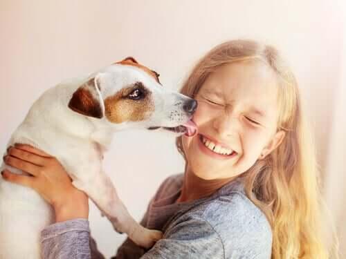 bewusstlos - Hund leckt Mädchen im Gesicht
