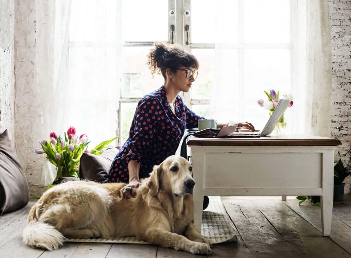 Postoperative Pflege - Hund neben Frau