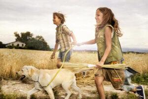 Wenn unser Hund uns folgt, ist dies da Ergebnis einer jahrelangen Interkation zwischen Hund und Mensch