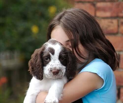 Die Forschung belegt, dass Hunde Gefühle haben