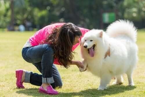 """Zum Nachdenken: """"Mein Hund ist mein bester Freund"""""""