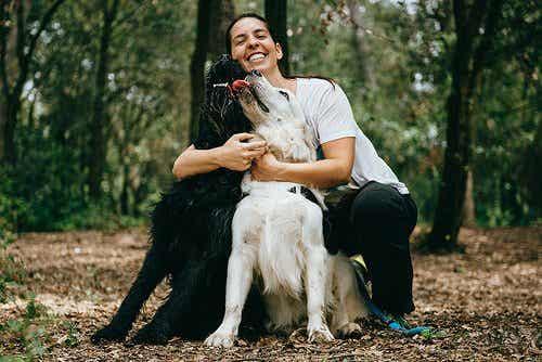 Eine Studie kam zu dem Schluss, dass Hunde Umarmungen hassen