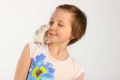 Ratten scheinen zu lachen, wenn sie von einer vertrauenswürdigen Person gekitzelt werden