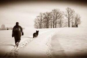 Tägliche Spaziergänge halten dich und deinen Hund fit